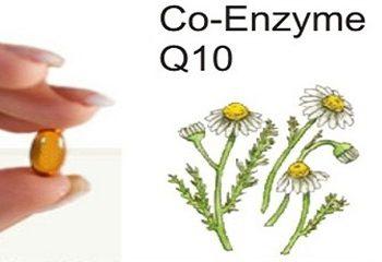 در مورد کوآنزیم ۱۰ Q چه می دانید؟