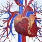 اثر رژیم کربوهیدرات با شاخص گلایسمی پایین بر عوامل خطر بیماری های قلبی و عروقی
