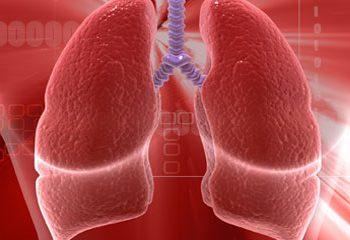 رژیم غذایی سالم و پیشگیری از بیماری مزمن انسدادی ریه