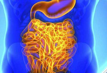 اثر ترکیبات رژیمی بر بیماری های قلبی ناشی از فلور میکروبی روده است.