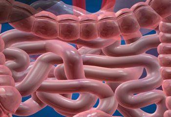 مضرات غذاهای حاوی دی اکسید تیتانیوم بر بیماری التهابی روده