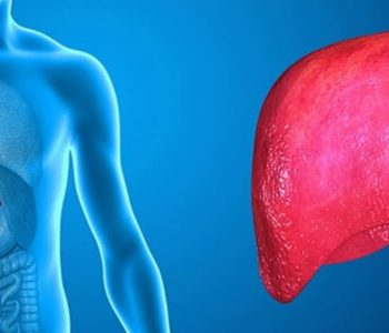 کشف دارویی جدید برای درمان آسیب کبدی ناشی از چاقی