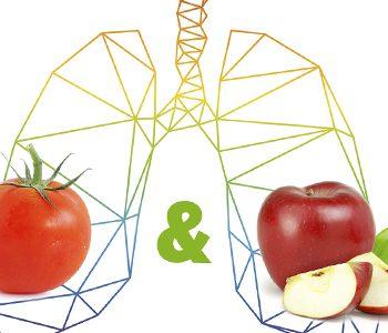 حفظ عملکرد ریه با مصرف بیشتر میوه و سبزی