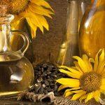 روغن آفتابگردان، موثر در کاهش خطر بیماری قلبی و سکته مغزی