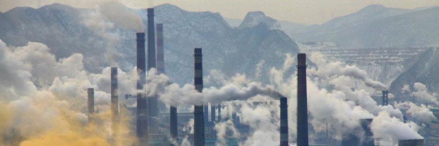 تغذیه و نقشی که در کاهش اثرات مخرب آلودگی هوا دارد