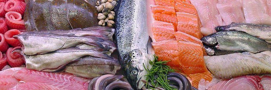 ماهی، غذایی که میتواند به سلامتی افراد سالمند کمک کند.