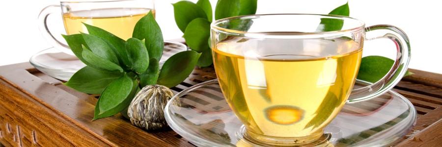 نقش چای سبز در درمان مبتلایان به بیماریهای متابولیکی ارثی