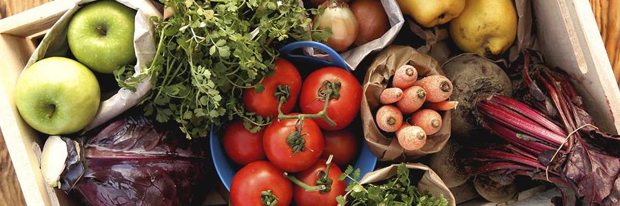 رژیم غذایی سالم و مقوی ضامن حفظ سلامتی