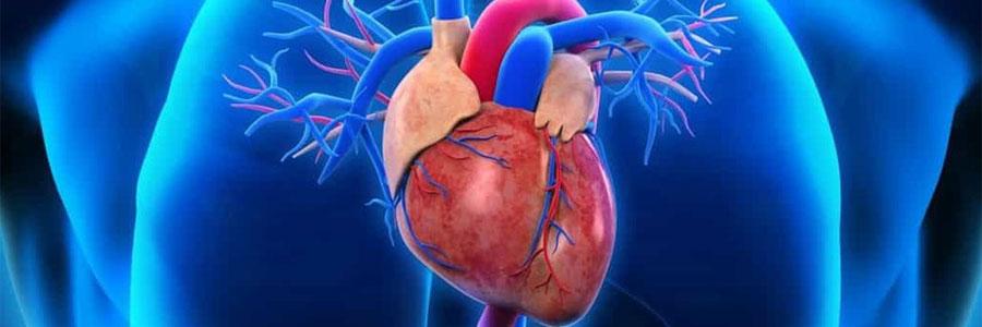 عوارض سیگار–  سیگار و بیماری قلبی