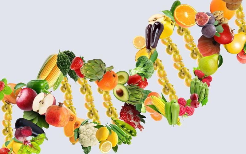 نقش تغذیه در سرطان: غذاهای ضد سرطان