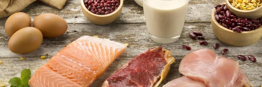 منابع پروتئین گیاهی را بشناسید