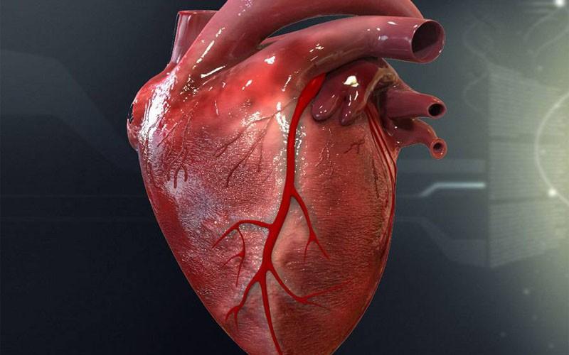 بیماری قلبی - عروقی، شایع ترین علت مرگ و میر است