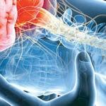 پیشگیری از سکته مغزی به کمک سبک زندگی سالم