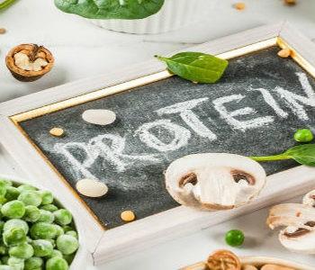 نقش پروتئین در بدن – چرا باید پروتئین مصرف کنیم؟